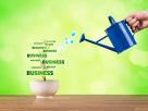 Business ranking
