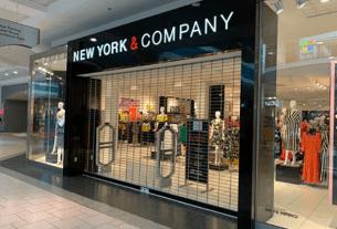 new york & co