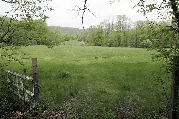 Patrick Farm