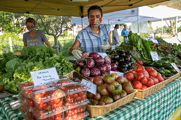 piermont farmers market